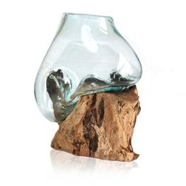 Wurzelholz | Vase | Kaffeewurzel | Glasvase | Handarbeit | jede Vase ein Unikat | groß -