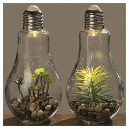 2er Set LED Retro Glühbirne mit Pflanze dickes Glas Kies Deko schaltbar zum stellen - 1