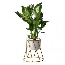 Blumentopf-Set, geometrische Dekoration mit Behälter, Dreikant-Gestell aus Eisen, Keramik-Blumentopf; ideal für Sukkulenten, Bromeliengewächse, Mini-Kakteen, Kunstpflanzen und mehr - 1