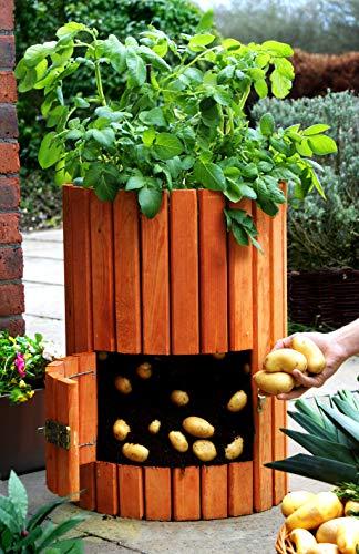 Brunnen und Mehr Qualitativ hochwertiger Kartoffelpflanzer aus Holz - 2