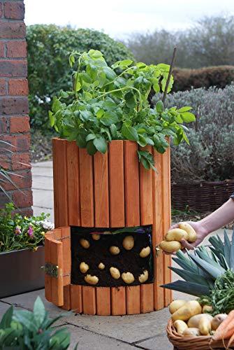 Brunnen und Mehr Qualitativ hochwertiger Kartoffelpflanzer aus Holz - 3