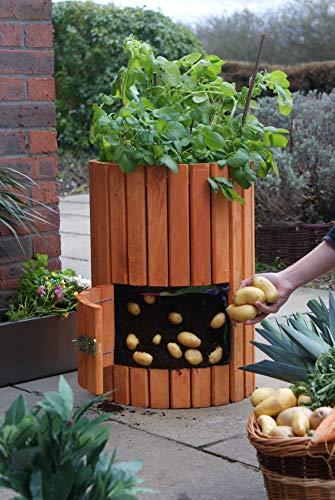 Brunnen und Mehr Qualitativ hochwertiger Kartoffelpflanzer aus Holz - 4