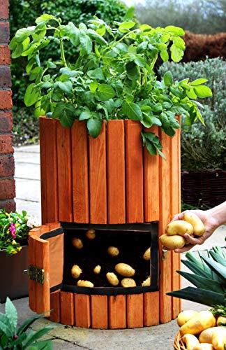 Brunnen und Mehr Qualitativ hochwertiger Kartoffelpflanzer aus Holz - 6