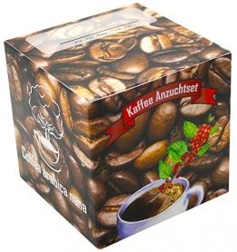 Geschenk-Anzuchtset Kaffee - Echter Cafe Arabica Nana - Kaffee Samen Anzuchtset - Geschenk Für Kaffeeliebhaber - Witziges Geburtstagsgeschenk - 1