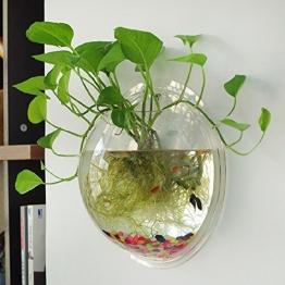 Idylische Blase Schüssel Pflanze Aquarium aus Acryl mit Wandhalterung Blumentopf GartenTerrasse Balkon Wand-Dekor Durchmesser : 15 cm (Transparente) - 1
