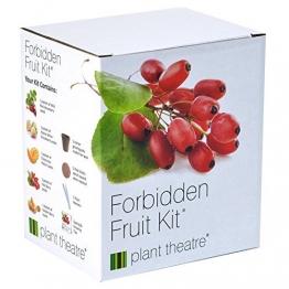Kit Verbotene Früchte von Plant Theatre - 5 Köstliche Früchte wachsen - Ein tolles Geschenk - 1