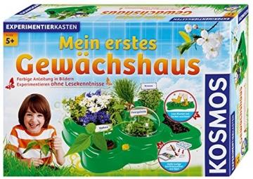 KOSMOS 634919 Mein erstes Gewächshaus - 1
