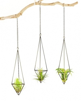 Mkouo 3 Stück Luftpflanzen Hängenden Metall Luft Pflanze Halter Topf Container Dekoration - Bronze - 1