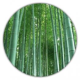Riesenbambus - Moso Bambus - ca. 50 Samen - schnelles Wachstum - winterharte Pflanze - Gartenpflanze - 1