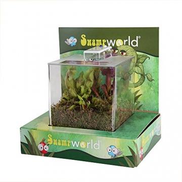 Swampworld Terrarium - 2-farbige Beleuchtung - 3 Fleischfressende Pflanzen - 5