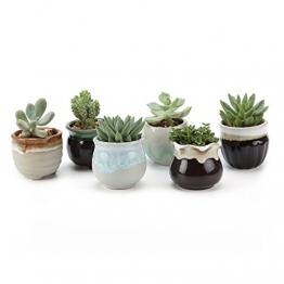 T4U 6.5CM Sukkulenten Töpfe Kaktus Pflanze Töpfe Mini Blumentöpfe Grau&Schwarz Basis Fließend Glasur Serie 6er Set - 1