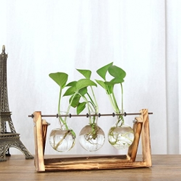 Xueliee Desktop Glas Übertopf Leuchtmittel Vase mit Retro Ständer und Metall Drehgelenk Halterung aus Massivem Holz für Hydrokultur Pflanzen Home Garten Hochzeit Decor, Retro Wood+3 Bulbs, 14X28cm - 1