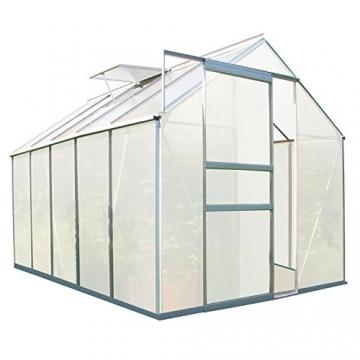 Zelsius Aluminium Gewächshaus für den Garten | 310 x 190 cm | 6 mm Platten | Vielseitig nutzbar als Treibhaus, Tomatenhaus, Frühbeet und Pflanzenhaus - 1