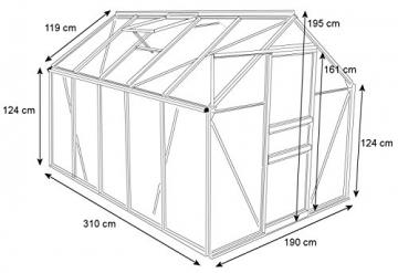 Zelsius Aluminium Gewächshaus für den Garten | inklusive Fundament | 310 x 190 cm | 6 mm Platten | Vielseitig nutzbar als Treibhaus, Tomatenhaus, Frühbeet und Pflanzenhaus - 2